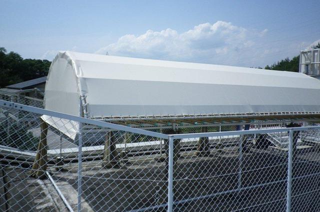 屋上テント(張替え)